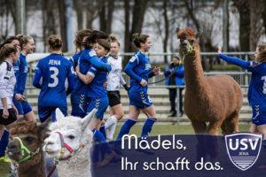AlpakaNinchen beim Fussball FF USV JENA So.12.05.2019 @ Ernst-Abbe-Sportfeld Jena